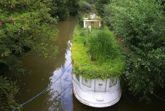 Green roofed house boat - I have very mixed feelings (i.e. wouldn't want to maintain it or clear low bridges with it, but darn does it look oddly cool).