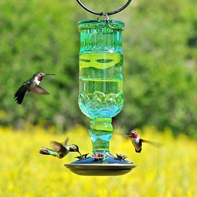 Woodstream Lawn & Garden Antique Bottle Hummingbird Feeder
