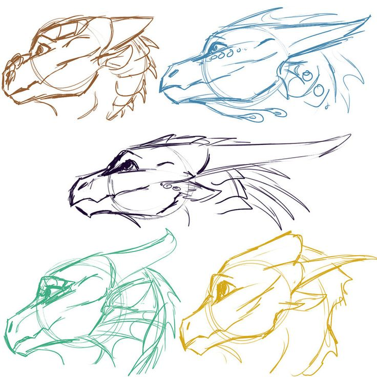 [WoF] Dragonet Sketches 2 by Mollish on DeviantArt