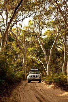 Four wheel driving - Moreton Island, Australia