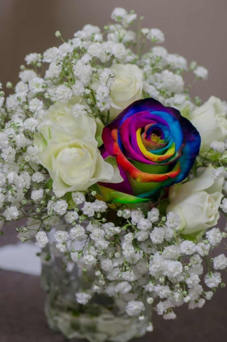 Wedding Photographer - Candid Photos of a Lifetime  Rainbow rose - in memory of loved ones