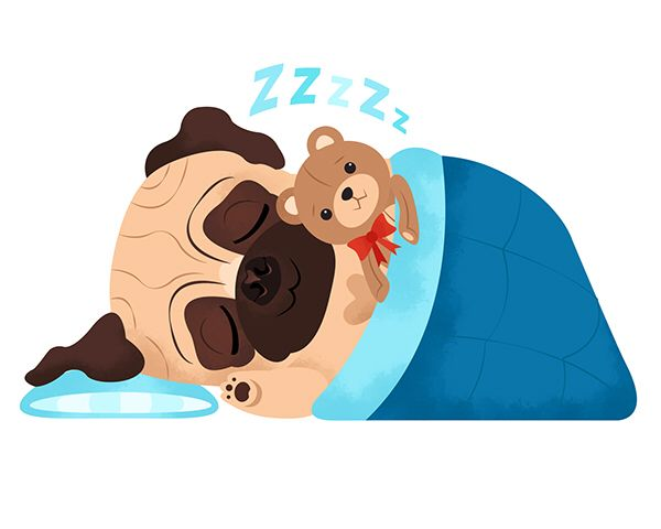 25 best ideas about pug cartoon on pinterest pug for Cama kawaii