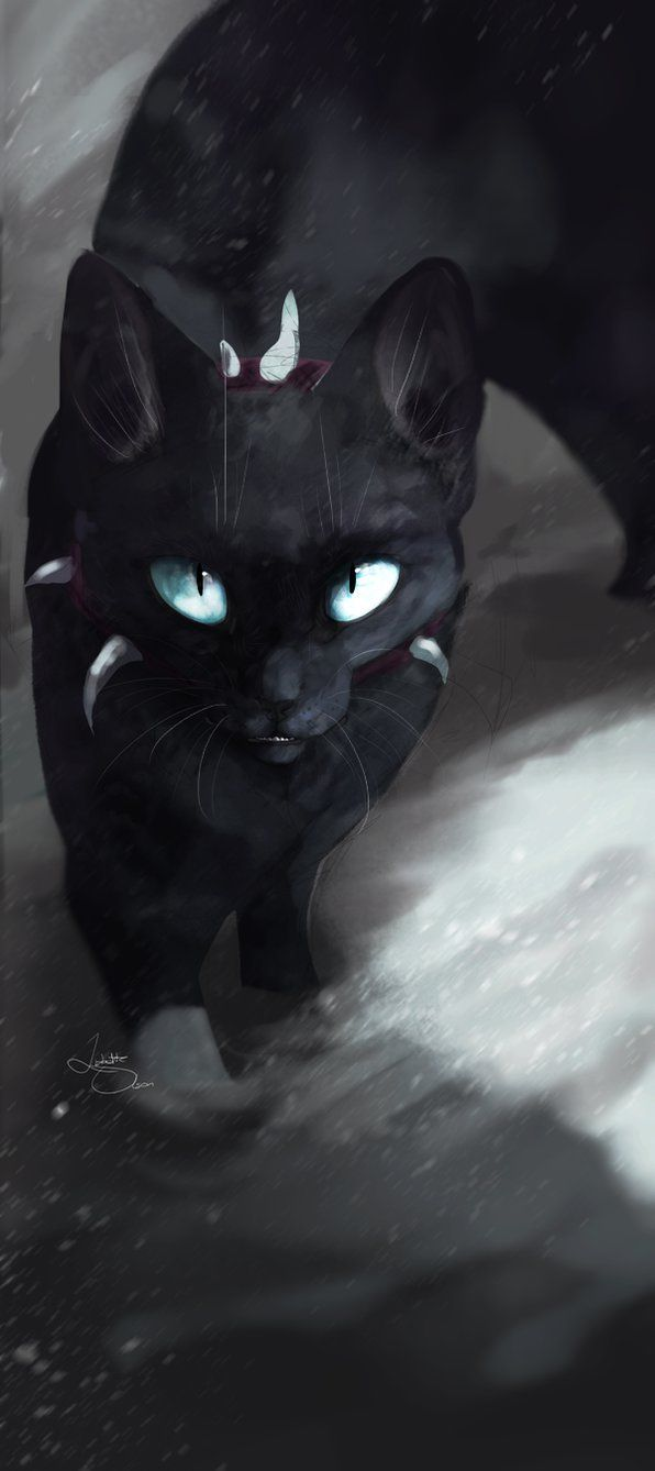 I'm Scourge. I was a kittypet named Tiny but rose to be a major villain. I took one of Firestar's nine lives and took Tigerstars nine lives in a single blow. Then Firestar came back. He smashed me against a rock and the Blood Clan fell. It was the end of me.