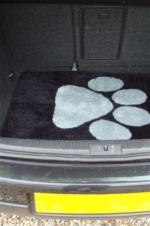 Boot cover