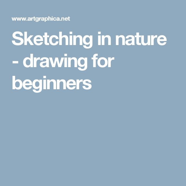 Sketching in nature - drawing for beginners