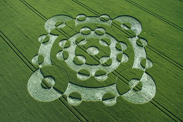 The Beautiful World of Crop Circles (Photo Gallery)