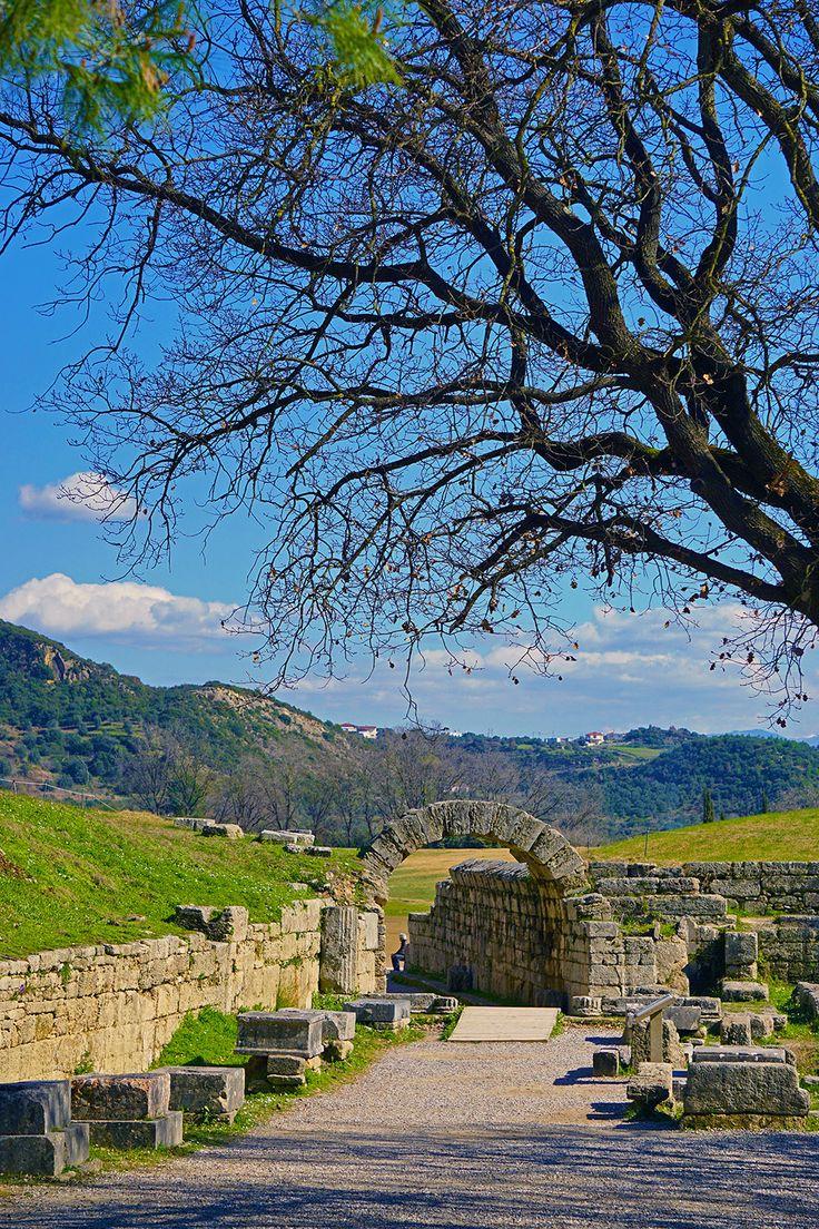 The historic landscape - Ancient Olympia, Ilia, Greece Copyright: Chris Koulis