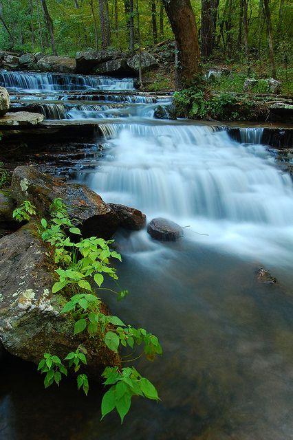 Collins Springs, Arkansas http://www.vacationrentalpeople.com/vacation-rentals.aspx/World/USA/Arkansas