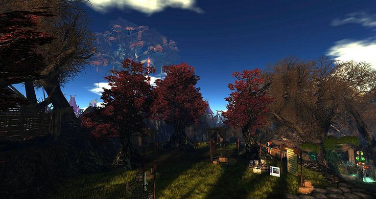 Fantasy Faire 2014 - Mourningvale Thicket_002