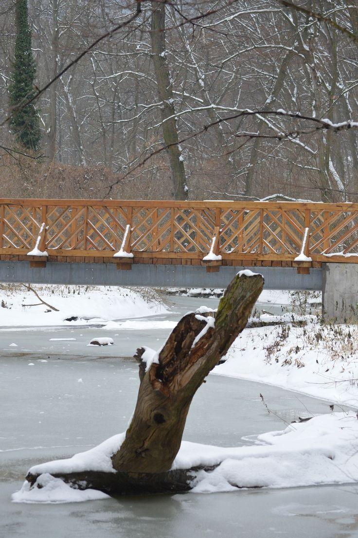 Gáti Erika Megrekedve A majdnem befagyott Gaja-patak. Több kép Erikától: www.facebook.com/erika.gati.3