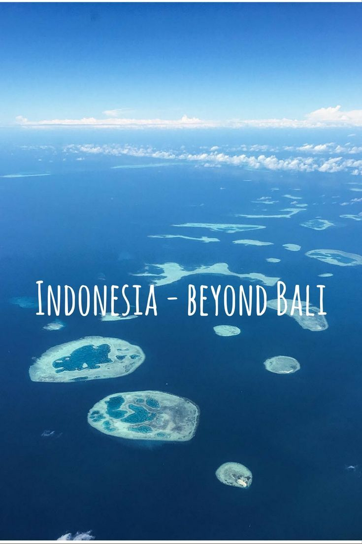 Are you keen on a trip to Indonesia but want to go beyond Bali? I have put together a little guide on some of the other islands that you shouldn't miss. Trek to find Orangutans in Borneo, dive in the clear waters of Wakatobi and meet the Bajo people, and find dragons on Komodo and Rinca Island! Click through for the whole post and practical tips on how to get around.