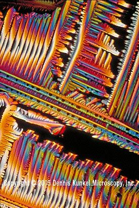 Duuuuuuude. Valium (diazepam) crystals _ magnified x40 by SEM __ Copyright 1985 Dennis Kunkel Microscopy, Inc.