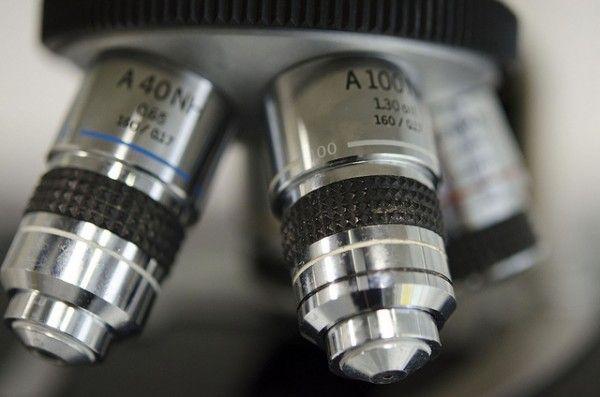 microscopios utilizados en biología para estudiar biologia 1ro medio