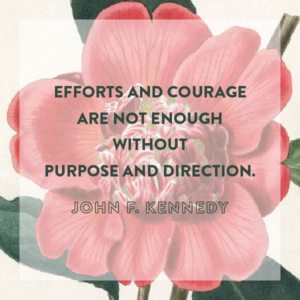 Efforts and courage are not enough without purpose and direction. - John F Kennedy