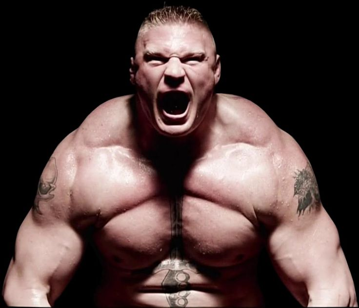 My Thoughts on the Brock Lesnar Situation.
