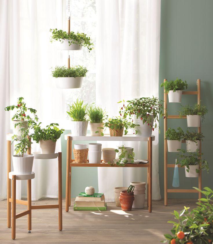les 36 meilleures images du tableau laissez place au vert sur pinterest jardin d 39 herbes. Black Bedroom Furniture Sets. Home Design Ideas