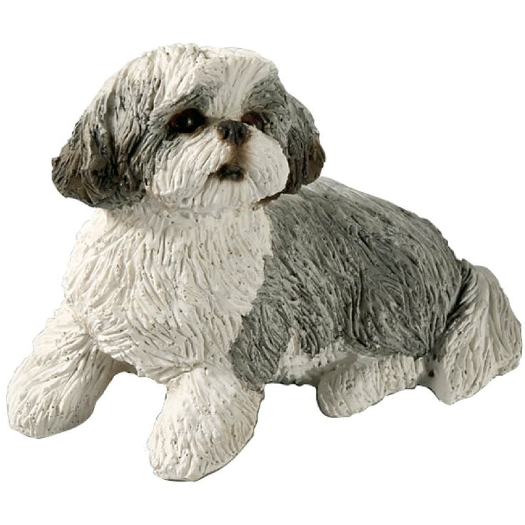 Amazon Com Sandicast Small Size Silver And White Shih