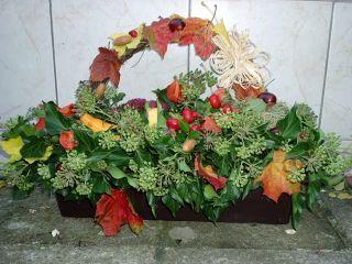 podzimní truhlík