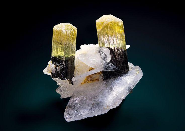 Tourmaline crystals on white blades of albite. from Stak Nala, Haramosh Mts., Gilgit-Baltistan , Pakistan