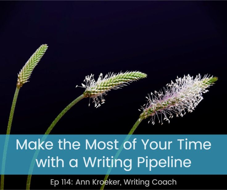 Make the Most of Your Time with a Writing Pipeline (Ep 114: Ann Kroeker, Writing Coach)