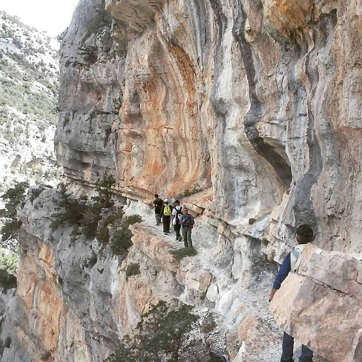Sardegna-S'istrada longa passaggio mozzafiato nei monti di Baunei. Photo: @oasi_biderosa