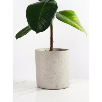 Large White Marble Plant Pot: This large concrete planter is hand-cast using carefully sourced aggregates and the highest quality Portland cement. The white marble finish is set in white Portland cement revealing a polished delicate translucent white fleck. A perfect pot to compliment any plant.
