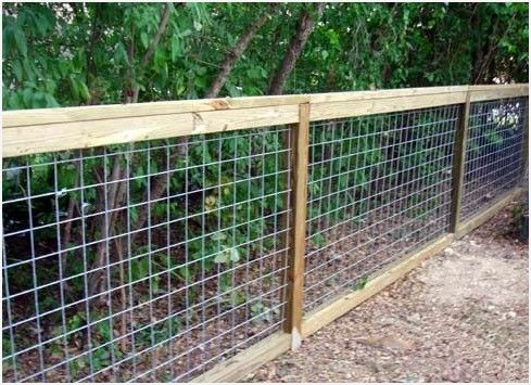 Weld Mesh Chicken Wire Hog Wire Fence Panel Buy Plastic Garden Chicken Wire Fence Chicken Wire Mesh Fencing 12 Chicken Wire Fence Chicken Fence Diy Dog Fence
