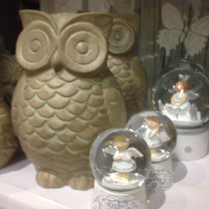 Owls big and small