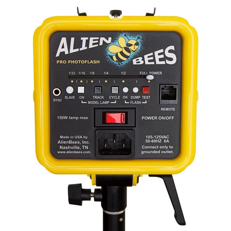 Been using AlienBees in my traveling studio for years. Great light, durable, great customer service from Paul Buff Inc out of Nashville, TN.