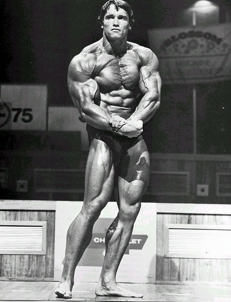 Arnold Schwarzenegger; The most successful immigrant – Bodybuilding