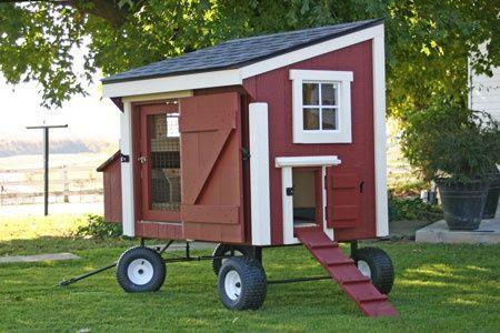 Portable chicken coop with wheels chicken stuff for Portable chicken coop on wheels