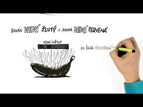 NEZkreslená věda III: Metabolismus – o přeměně látek - YouTube