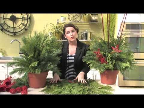 ▶ Outdoor Christmas Planter - Making a Live Holiday Planter - YouTube