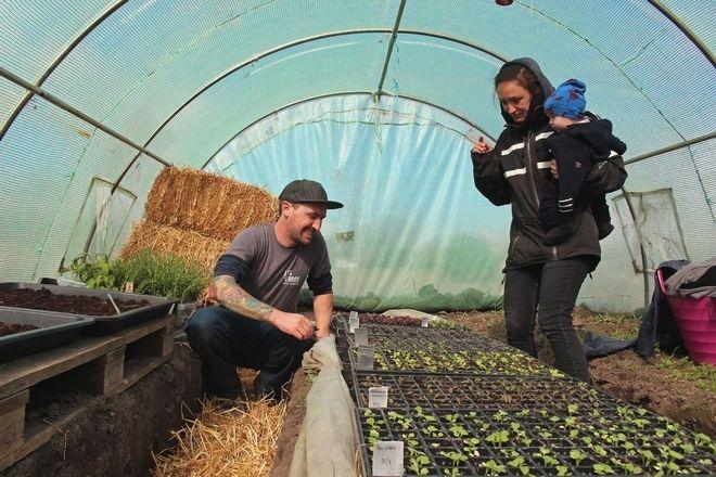 """Buddha Browett och Sofia Reuterving odlar det mesta på friland, ett stenkast från Inre Ringvägen. Men de spödaste grönsakerna får växa till sig i mer skyddad miljö. FoTo: Åse-Marie NIlsson    @Citat :     """"Stadsodling är stort överallt, men inte lika stort i Sverige, även om det växer """"Det man odlat själv smakar alltid bättre"""""""