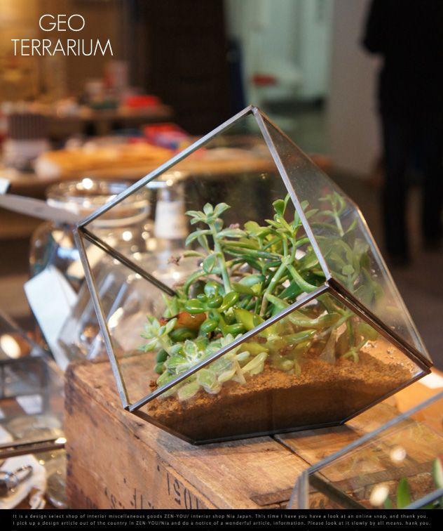 斜めの植物。 GEO TERRARIUM ジオテラリウム | まとめのインテリア - デザイン雑貨とインテリアのまとめ