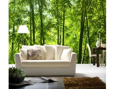 """""""Asian Bamboo Forest"""". A wall mural from Muralunique.com. https://www.muralunique.com/asian-bamboo-forest-12-x-8-3-66m-x-2-44m.html"""