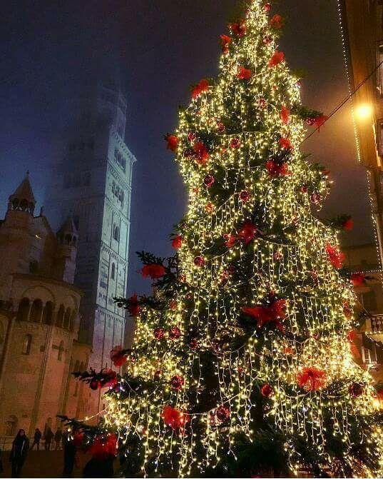#Modena #Natale #agenzieimmobiliari #Ghirlandina #mazzicase