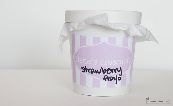 Ilene's Creamery: Custom Ice Cream Cartons and Labels | come on, ilene!