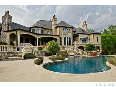 10,000 square feet of elegant living space, only if I had a maid. I wouldn't clean this huge house