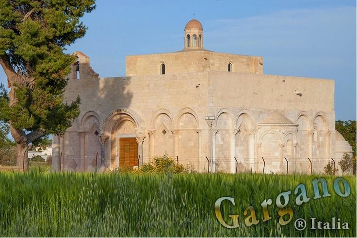 Manfredonia: Basilica di Siponto