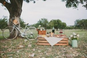 Wedding proposal, picnic pedida de mano vermut inspiration vintage bicycle