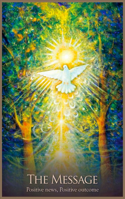 Positive news,positive outcome Needed this today Tarot and Oracle cards