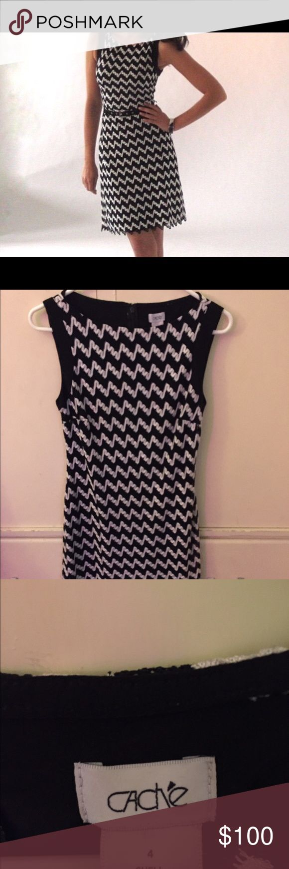 Caché Chevron Print Dress Caché Chevron Print Dress with black slip. Size is 4. Zippered in the back to slip on. Open to offers Cache Dresses Midi