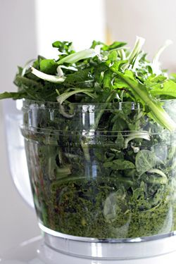 """Dandelion Greens Pesto. Cool Idea for something that's usually dismissed as """"just"""" a weed."""