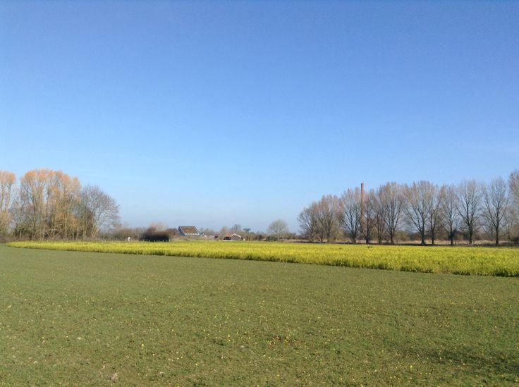 2014-03-09 Mooi uitzicht richting IJssel met rechts de pijp van de voormalige steenfabriek