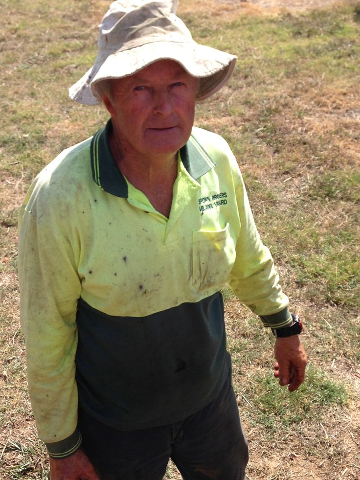 Barry picking Noble Riesling.