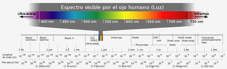 Qué aves pueden ver el color azul? Espectro de luz visible por el ojo humano.  Casi todas las aves son incapaces de ver el color azul  En cuanto a la visión las aves tienen dos posibilidades: violeta sensible (VS acrónimo del término anglosajón Violet Sensitive) y ultravioleta sensible (UVS Ultraviolet Sensitive).  Normalmente las aves tienen un espectro visual parecido al humano. Sin embargo las aves con visión UVS tienen un pigmento adicional en los conos de su retina que absorbe la luz…