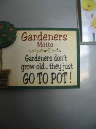 Gardening Quotes : Grows on You #quote #gardenwisdom