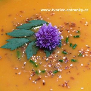 Vodnice je lahodná zelenina, neprávem opomíjená. My jsme z ní uvařili lehkou zeleninovou polévku kré...