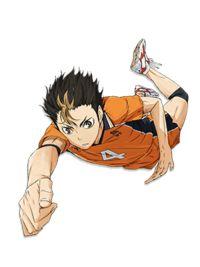 Yū Nishinoya/Image Gallery - Haikyuu!! Wiki - Wikia